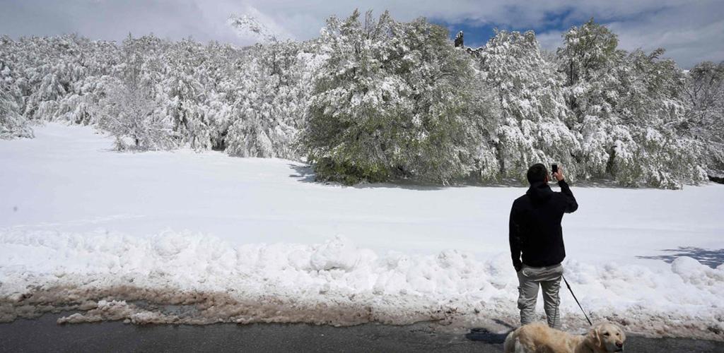 Korsikoje iškritęs gausus sniegas paralyžiavo eismą