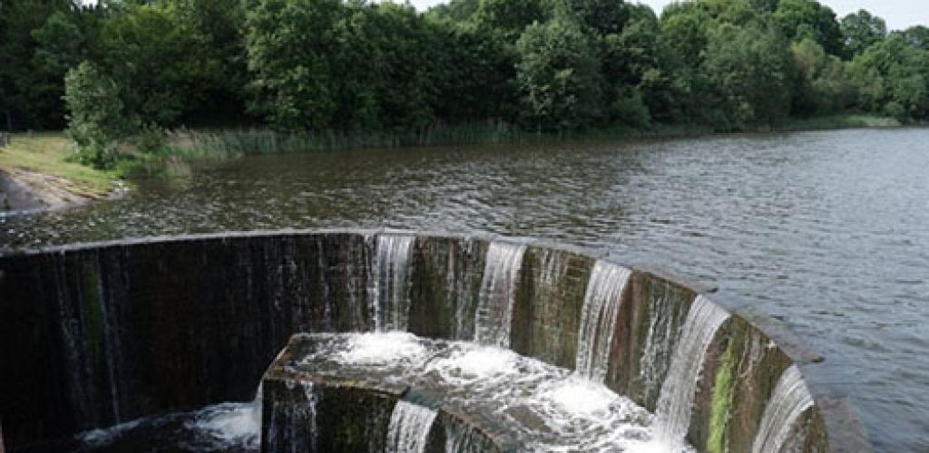 Nugriauta Salantų užtvanka atlaisvins 46 km ilgio kelią saugomoms žuvims